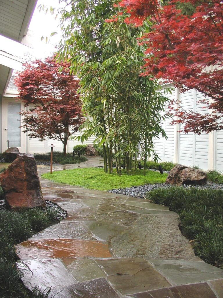 snowden-landscape-design-1089-ross-circle-4